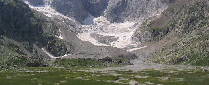 Troupeau de moutons et loup dans la montagne