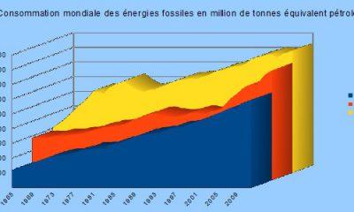 consommation-mondiale-charbon-gaz-petrole