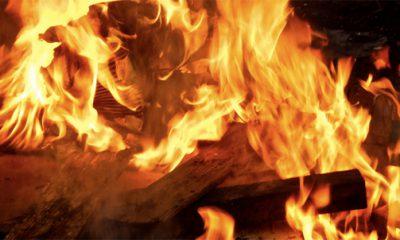 est ce ecologique de se chauffer au bois ?
