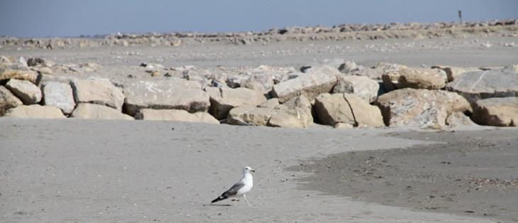 erosion de la côte