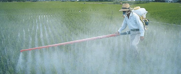 commune sans pesticide ?