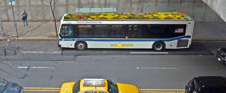 bus à toit végétalisé à New-York