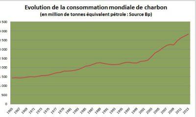 Consommation mondiale de charbon