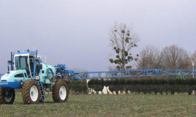 épandage de pesticides cancérogènes
