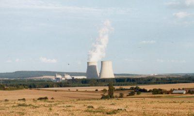 contamination radioactive des aliments