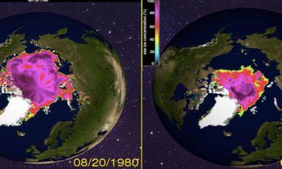 les glaces fondent, les océans montent