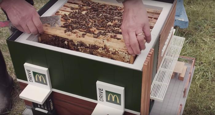 McDrive-abeilles-700
